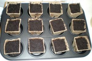 Såpotter i muffinsbrett